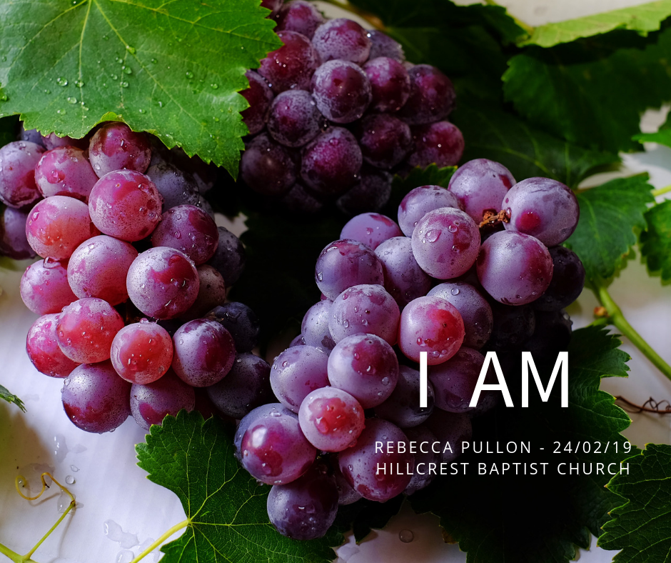 I AM series: The Vine – Rebecca Pullon